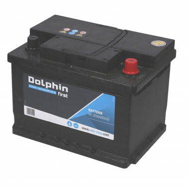 DOLPHINE First batterie calcium 60 Ah