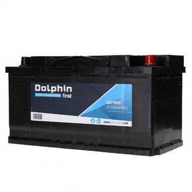 DOLPHINE First batterie calcium 95 Ah