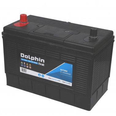 DOLPHINE First batterie calcium 110 Ah